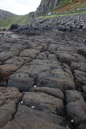 Dinosaur Footprints at Staffin: Staffin Bay