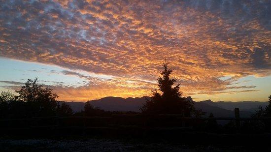 Cogollo del Cengio, Italia: Agriturismo Malga Roccolo