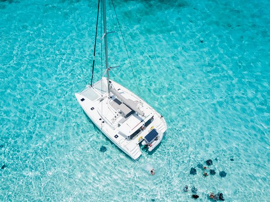 West Bay, Grand Cayman: Catch the Cat Catamaran at Stingray City - Grand Cayman