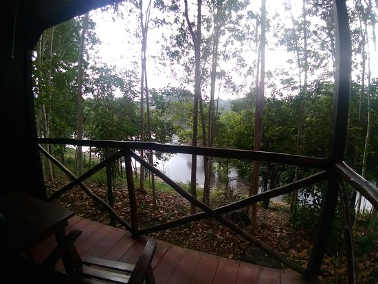 Amazon Turtle Lodge: P_20181013_114622_large.jpg