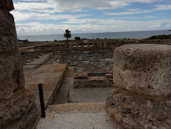 Archäologisches Museum von Baelo Claudia Bild