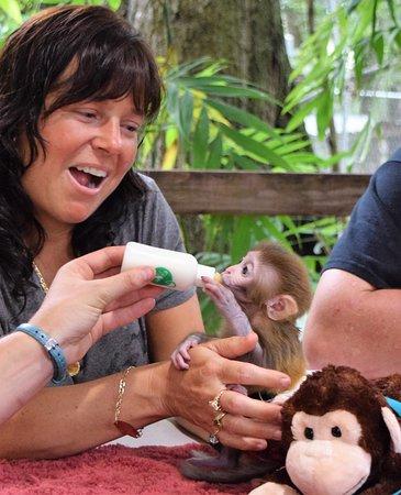 baby monkey encounter
