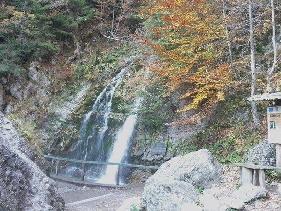 Busteni, Румыния: Urlătoarea Waterfall