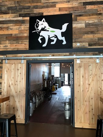 Wolf Branch Brewing