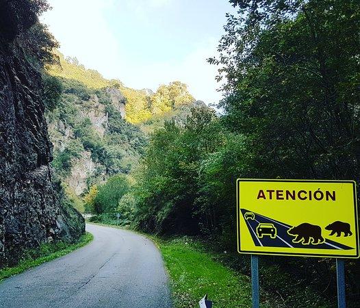 Saliencia, Spanyol: IMG_20181023_222924_525_large.jpg