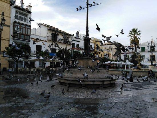 Plaza Del Cabildo: IMG-20181022-WA0016_large.jpg
