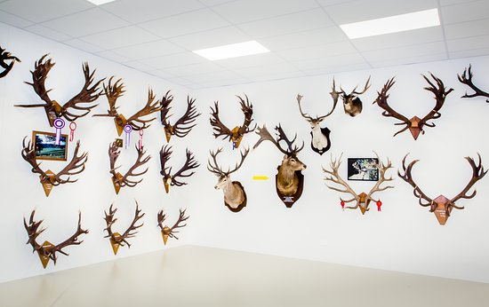 The World of Deer Museum & Speciality Shop