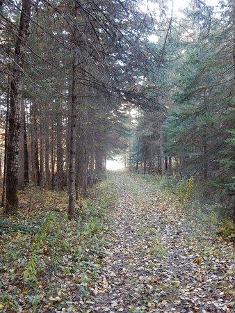 Saint Urbain, Canada: sentier