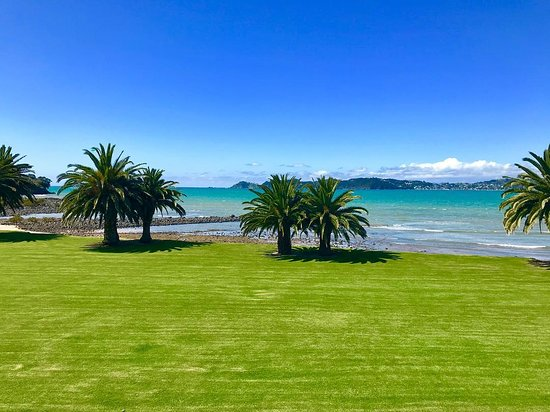 Foto Waitangi