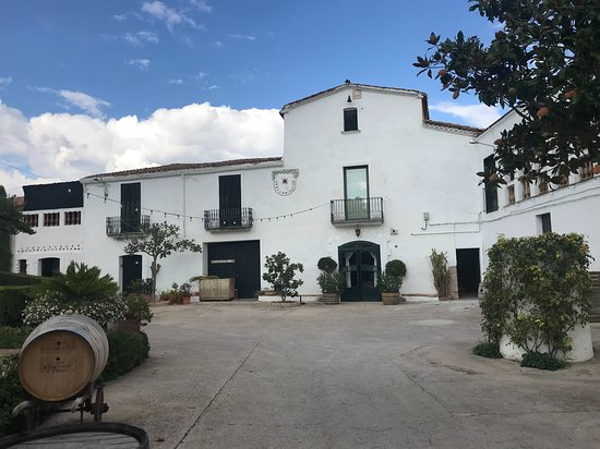 Montserrat hike, wine tasting, and tapas from Barcelona: Finca ca n'Estella winery