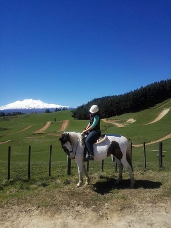 Ohakune, New Zealand: Green hills and mountain view in the backcountry.