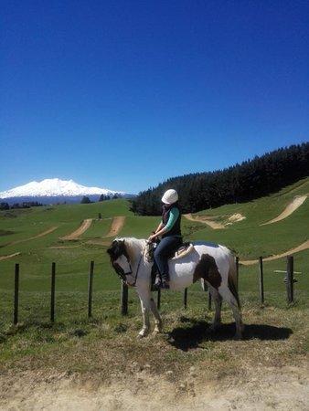 Ruapehu Homestead Horsetrekking