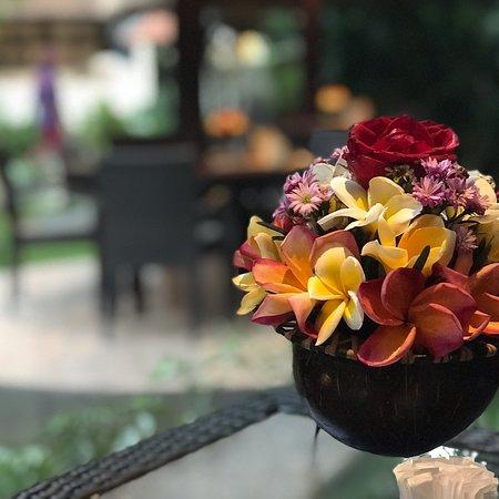Secret Garden Restaurant Photo