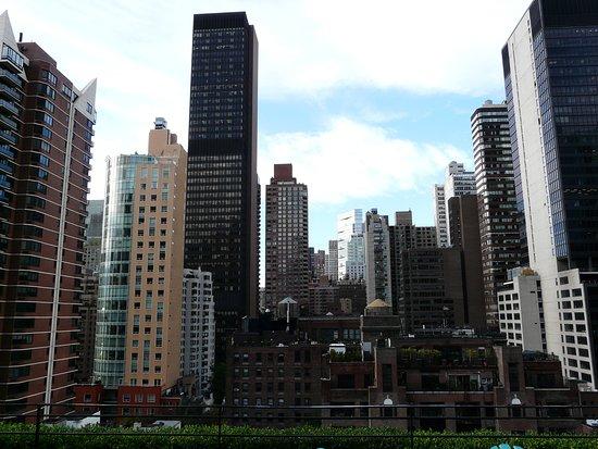 Vistas Desde La Terraza Picture Of Pod 51 Hotel New York