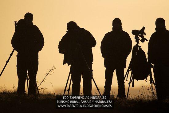 Hontanar, إسبانيا: Rutas Guiadas e Interpretadas Observación de Flora y su Fauna Asociada 