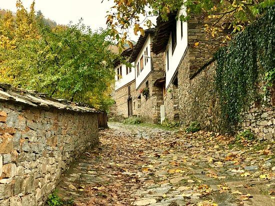 Kovachevitsa, Bulgarien: Village view