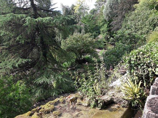 Jardin des Fontaines Petrifiantes (La Sone) - 2019 All You ...