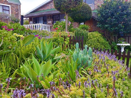 Dana Bay, Sør-Afrika: Garden