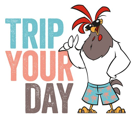 Trip Your Day