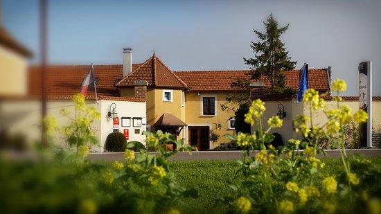 Karta Champagnedistriktet Frankrike.Logis Auberge Des Moissons Matougues Frankrike Omdomen Och