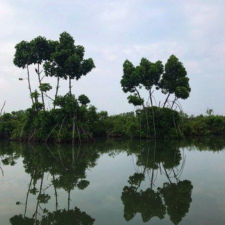 Munroe Island, India: photo2.jpg