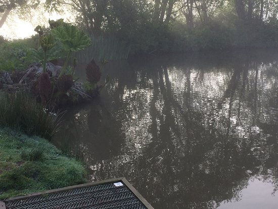 Dolton, UK: Peg 1 Tanners Cabbage