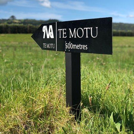 Te Motu Vineyard张图片