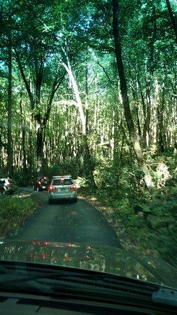 Short but beautiful drive