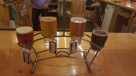 Bloomer Brewing Co