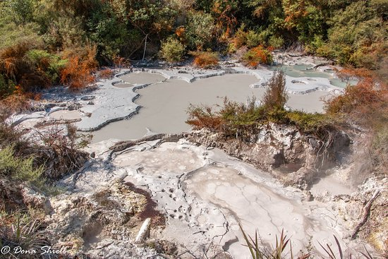 Taupo District, New Zealand: bubbling mud