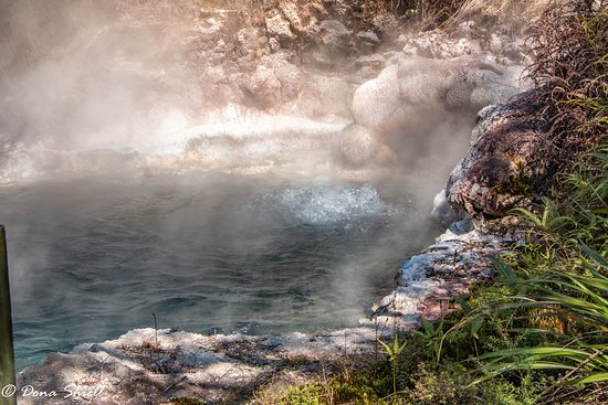 Taupo District, New Zealand: bubbling water