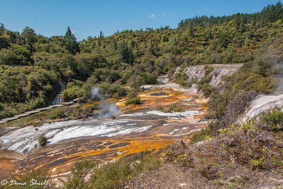 Taupo District, New Zealand: more views across thermal areas
