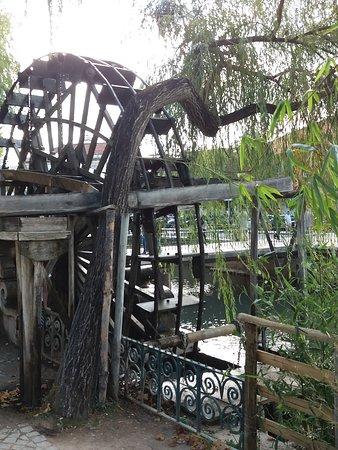 Roda do parque do Mouchao