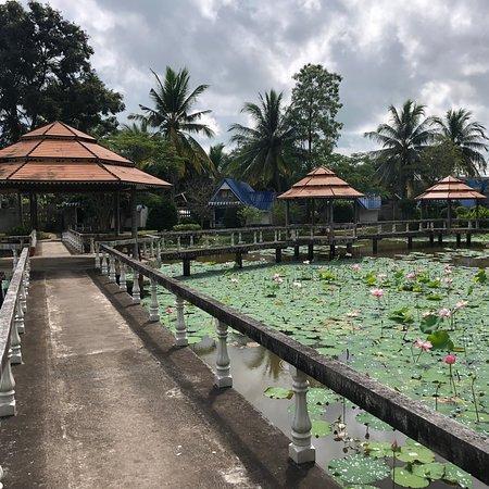 Kranuan, Tailandia: photo6.jpg