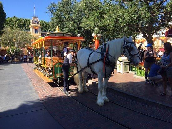 Raro momento tranquilo e sem tumulto - Picture of Disneyland