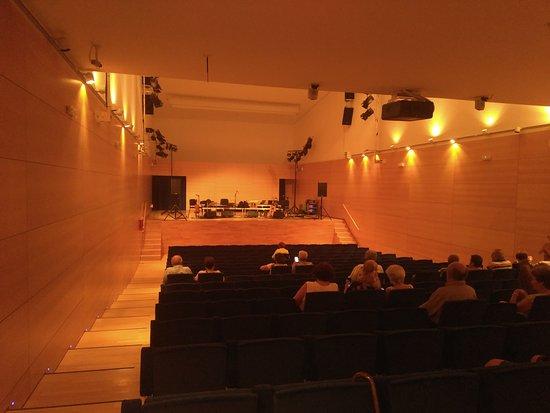 Auditori del Tivoli
