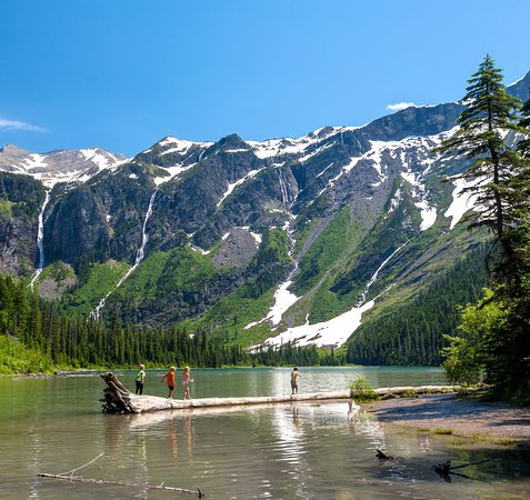It's a favorite challenge in Glacier National Park: Walk the log in Avalanche Lake, a small pocket of chilly water northeast of Lake McDonald. The family-friendly and wheelchair accessible Trail of the Cedars is just 2-miles long from the trailhead off Going to the Sun Road to the lake. PC: Adobe Stock #IconicLakes #NationalPark #ChildsPlay #ADA