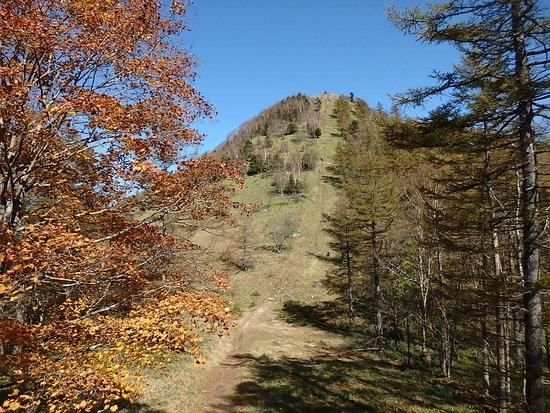Mt. Kasatoriyama