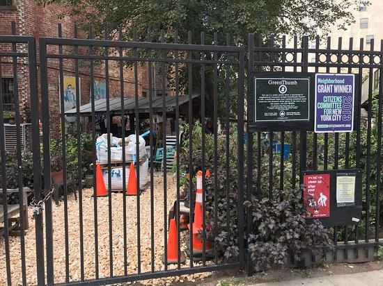 Harlem Historical Food Tour: Community garden space
