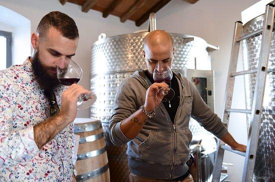 Cortona, Italien: Mirco and special guest tasting new wine 2018