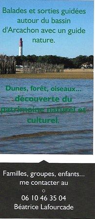 Bilde fra La Teste-de-Buch