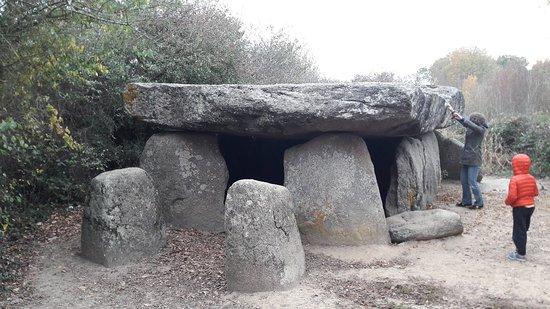 Dolmen de la Frébouchère