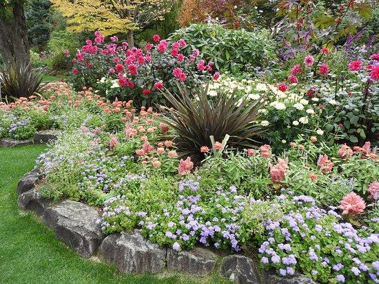 La Caster Natural Healing Garden