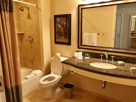 Omni Atlanta Hotel at CNN Center: Nice bathroom