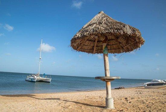 Beach - Boat
