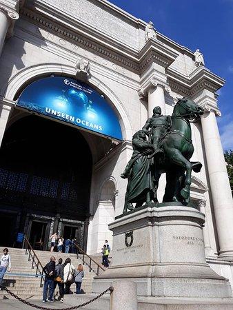 American Museum Natural History, Nueva York, Estados Unidos.