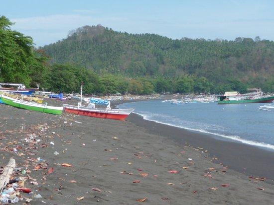 Safari Tours & Travel: plage de Batuputih