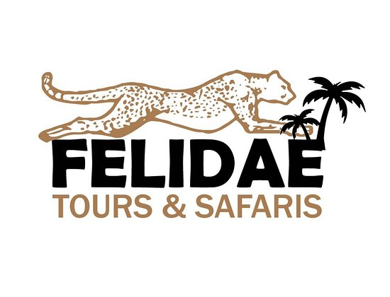 ‪Felidae Tours & Safaris‬
