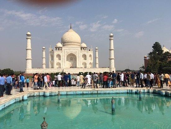 Elite Solutions: beautiful at the Taj!