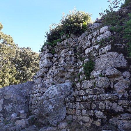 Site Archeologique De Cucuruzzu Levie 2019 Ce Qu Il Faut Savoir